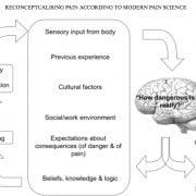Functional flow